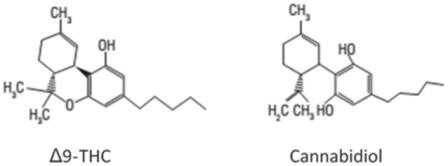 Химические структуры Δ9-тетрагидроканнабинола (Δ9-THC) и каннабидиола (CBD)