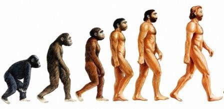 Начиная с Дарвина, эволюционное давление, формирующее уникальное свойство человека передвигаться на двух ногах, было предметом исследований