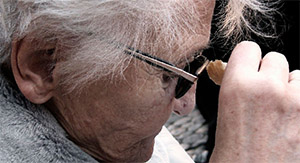 7,8-дигидроксифлавон: болезнь Альцгеймера