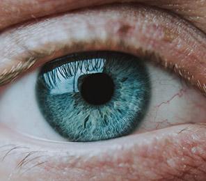 Влияние амлы (эмблики) на глаза