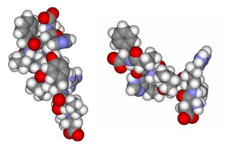 Ангиотензин I и ангиотензин II