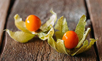 Ашваганда – это трава и популярная пищевая добавка