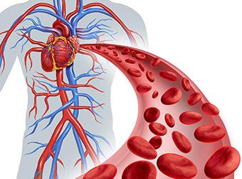 Влияние астаксантина на кровяное давление