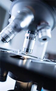 Цианидин в лабораторных условиях