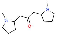 Циклогидрин