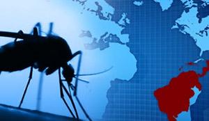 Лихорадка денге: эпидемиология