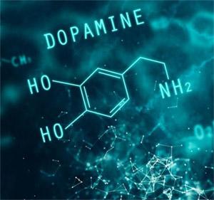Действие дофамина на клеточном уровне
