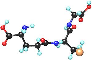 Экстракт зеленого кофе: глутатион