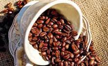 Взаимодействие эводии с кофеином