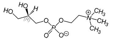 Холина альфосцерат (формула)