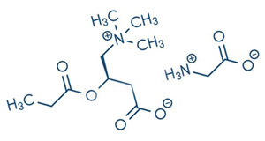 Глицин пропионил-L-карнитин (ГПЛК)