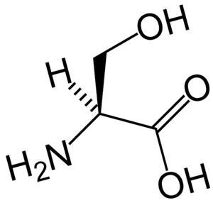 Структура и свойства глютамина