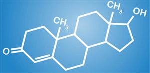 Гокшура чурна: взаимодействия с тестостероном