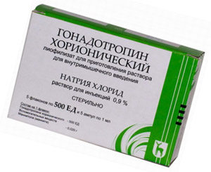 ХГЧ (хорионический гонадотропин человека): наличие