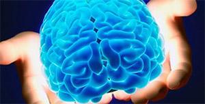 Хризин: нейрология