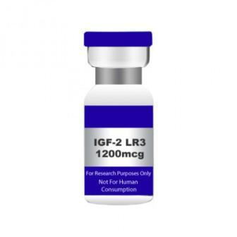 Инсулиноподобный фактор роста 2