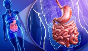 Избыточный бактериальный рост (в тонкой кишке)