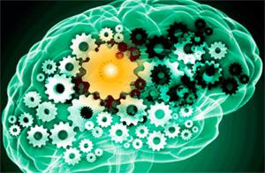 Кавинтон (Винпоцетин): память и когнитивные функции