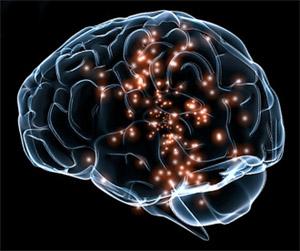 Кофеин: неврология
