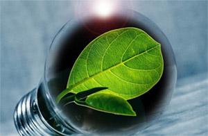 Кокосовое масло: биоэнергетика
