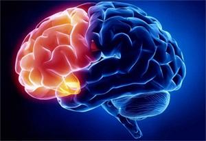 Креатин: неврология
