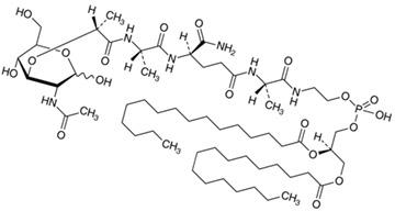 Мифамуртид является мурамил трипептид фосфатидилэтаноламином (MTP-PE), синтетическим аналогом мурамилдипептида