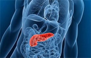 Отмечается, что диета, богатая мирицетином, способствует снижению риска развития рака поджелудочной железы