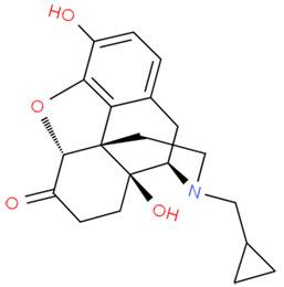 Налтрексон может быть описан как замещенный оксиморфон – здесь третичный заместитель амин метил заменяется метилциклопропаном