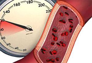 Достоверно известно, что инъекции олеамида, вызывающие сон и гипотермию, никак не влияют на кровяное давление и сердечный ритм