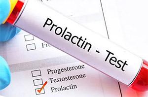 Эксперимент с участием здоровых взрослых мужчин, которые на протяжении 12 недель ежедневно принимали 1г экстракта пантов, показал, что прием препарата (подобно действию плацебо) не влияет на концентрацию пролактина в сыворотке