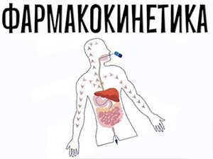 Прогестерон: фармакокинетика