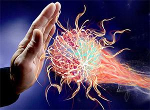 Роль рецепторов в иммунной системе