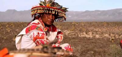 Индейцы и пейот