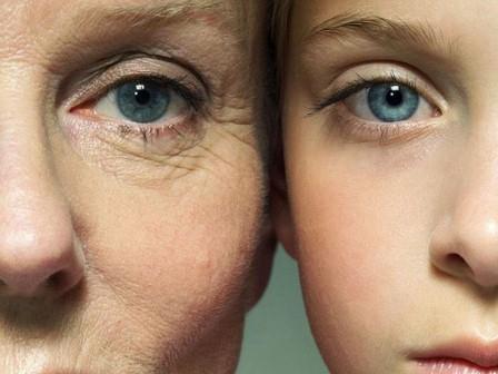 Старение – это процесс постепенного нарушения и потери важных функций организма или его частей.