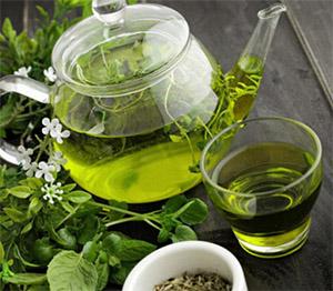 Теафлавины: катехины зеленого чая