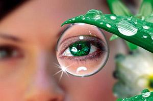 Витамин А и зрение