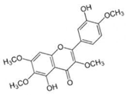Кастицин, биоактивный флавоноид Витекса, нормализованный в виде экстракта, в концентрации 0,78-25 µг/мл отмечает эффективность в подавлении оксидантной реакции в моноцитах от 20 до 50%